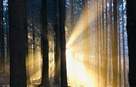 Dieses Bewusstsein allein, immer wieder erleben zu dürfen, ist pures Glücksgefühl!